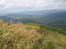 Bieszczady (Mountains in Poland), Photo 213