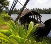 Kerala - backwaters (India), Photo 1311