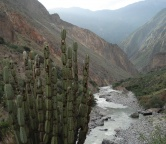 Colca Canyon, Photo 1516