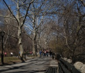 Central Park (NYC), Photo 1599