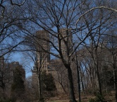 Central Park (NYC), Photo 1600