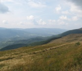Bieszczady (Mountains in Poland), Photo 221