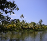 Kerala - backwaters (India), Photo 2359