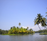 Kerala - backwaters (India), Photo 2361
