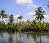 Kerala - backwaters (India), Photo 2365