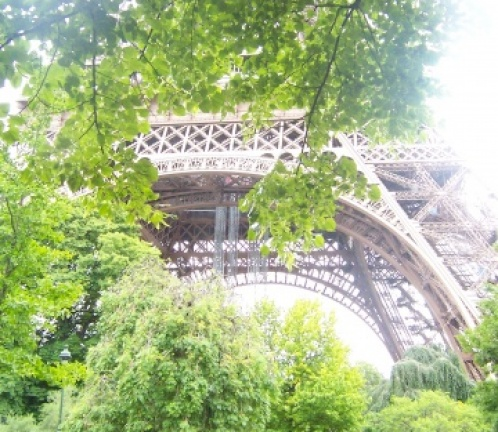 One day in Paris - expedition to the Paris Island, Photo 1489